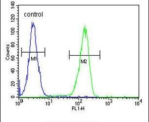 KCT2 Antibody (PA5-25498) in Flow Cytometry
