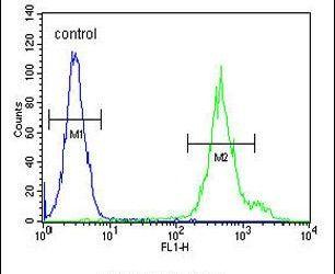 KLC3 Antibody (PA5-25268) in Flow Cytometry