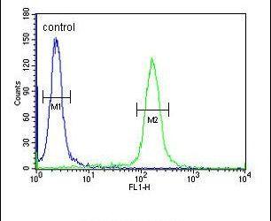 KLHL9 Antibody (PA5-25097) in Flow Cytometry