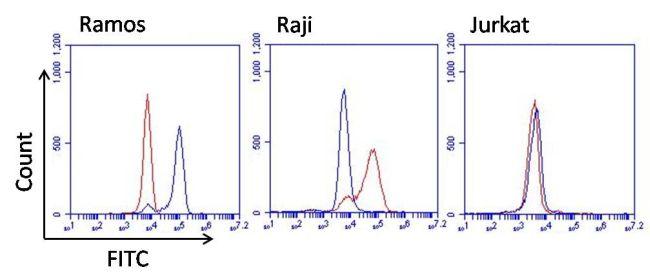 Human Kappa Light Chain Secondary Antibody (MA5-12117) in Flow Cytometry