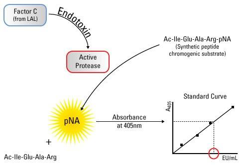 endotoxin assay elisa