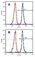 LAT Antibody (MA1-19307) in Flow Cytometry