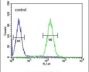 LCE2B Antibody (PA5-23538) in Flow Cytometry