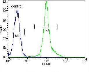 LCK Antibody (PA5-24615) in Flow Cytometry
