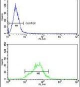 LDHA Antibody (PA5-26531) in Flow Cytometry