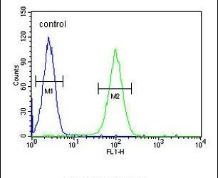 LNPEP Antibody (PA5-23777) in Flow Cytometry