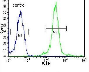LOC552889 Antibody (PA5-23565) in Flow Cytometry
