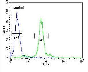 LOX Antibody (PA5-26135) in Flow Cytometry
