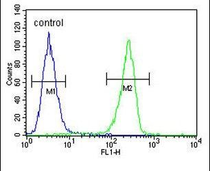 LUM Antibody (PA5-14571) in Flow Cytometry