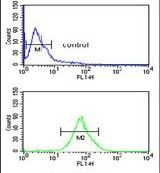 LUZP1 Antibody (PA5-24647) in Flow Cytometry