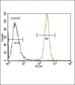 Lyn Antibody (PA5-14784) in Flow Cytometry