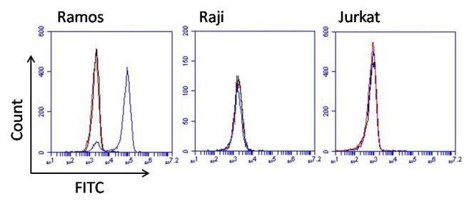 Human Lambda Light Chain Secondary Antibody (MA5-11590) in Flow Cytometry