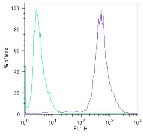 LIN28A Antibody (MA1-016) in Flow Cytometry