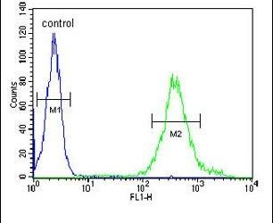 METTL17 Antibody (PA5-26973) in Flow Cytometry