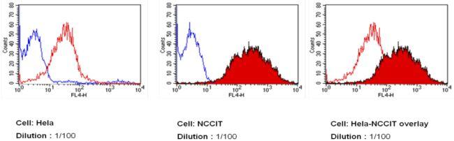 SSEA3 Antibody (MA1-020-D650) in Flow Cytometry