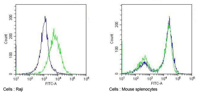 CD86 Antibody (MA1-10293) in Flow Cytometry