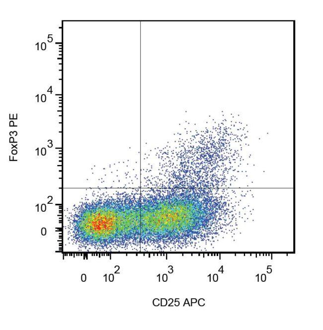 FOXP3 Antibody (MA1-10332)