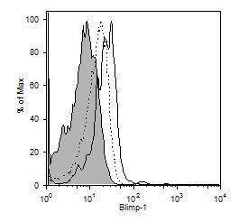 Blimp-1 Antibody (MA1-16874) in Flow Cytometry