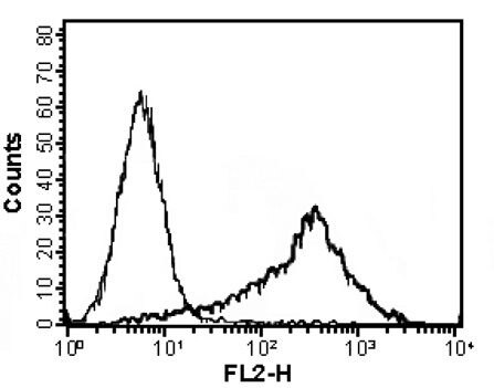 APRIL Antibody (MA1-21169) in Flow Cytometry