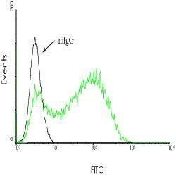 ACE Antibody (MA1-25293) in Flow Cytometry
