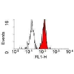 CD98 Antibody (MA1-34546) in Flow Cytometry