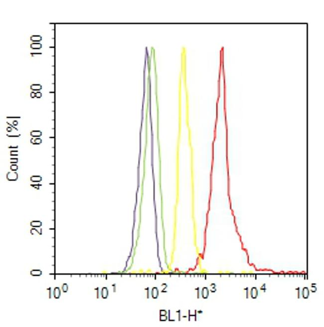 RhoA Antibody (MA1-134) in Flow Cytometry