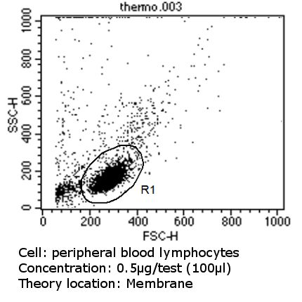 CD11a Antibody (MA11A10) in Flow Cytometry