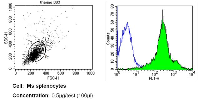 CD11a Antibody (MA11A5) in Flow Cytometry