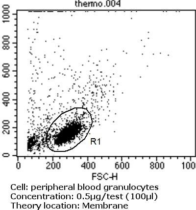 ITGB1 Antibody (MA2910)