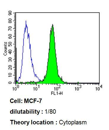 ARF1/ARF3/ARF5/ARF6 Antibody (MA3-060) in Flow Cytometry