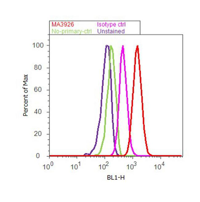 Sodium/Calcium Exchanger Antibody (MA3-926) in Flow Cytometry