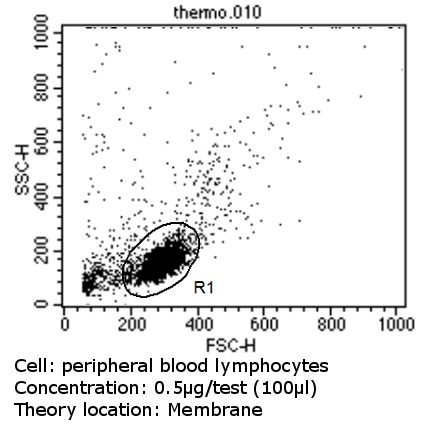 CD47 Antibody (MA5-11895) in Flow Cytometry