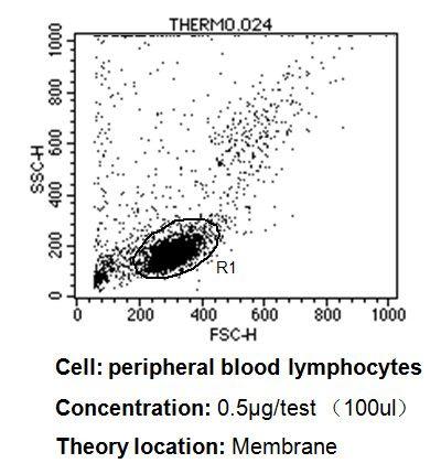 CD45RB Antibody (MA5-12496) in Flow Cytometry