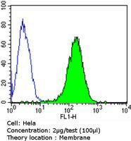 CD155 Antibody (MA5-13490) in Flow Cytometry