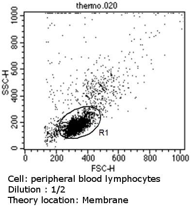 CD23 Antibody (MA5-14572) in Flow Cytometry