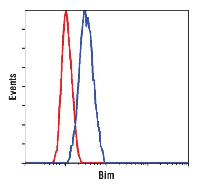 Bim Antibody (MA5-14848) in Flow Cytometry