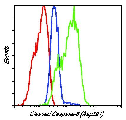 Caspase 8 (Cleaved Asp391) Antibody (MA5-15054) in Flow Cytometry