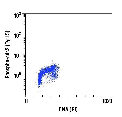 Phospho-CDK1 (Tyr15) Antibody (MA5-15062) in Flow Cytometry