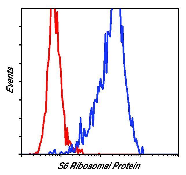 S6 Antibody (MA5-15123) in Flow Cytometry