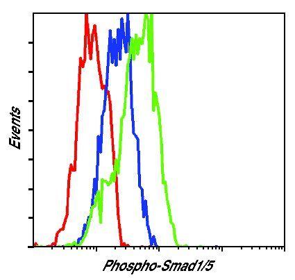 Phospho-SMAD1/SMAD5 (Ser463, Ser465) Antibody (MA5-15124) in Flow Cytometry