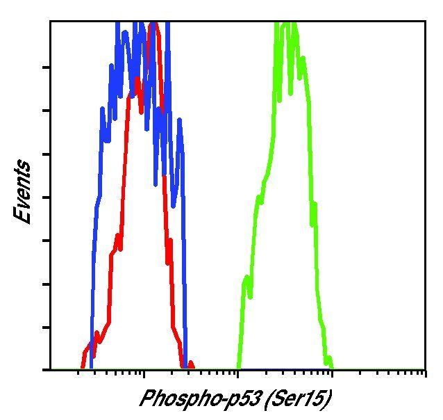 Phospho-p53 (Ser15) Antibody (MA5-15229) in Flow Cytometry