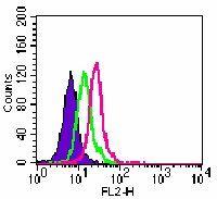 TLR6 Antibody (MA5-16177)
