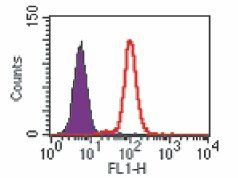 TLR9 Antibody (MA5-16181)