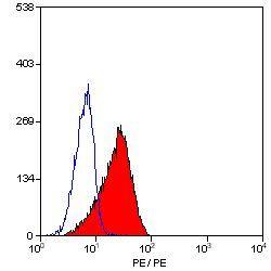 CD150 Antibody (MA5-16554)