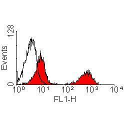 CD103 Antibody (MA5-16772)