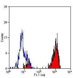 CD43 Antibody (MA5-16978) in Flow Cytometry