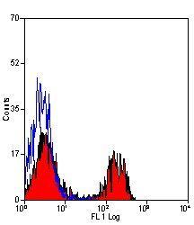 CD4/CD8 Antibody (MA5-17009)