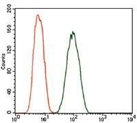 Dynactin 4 Antibody (MA5-17065) in Flow Cytometry