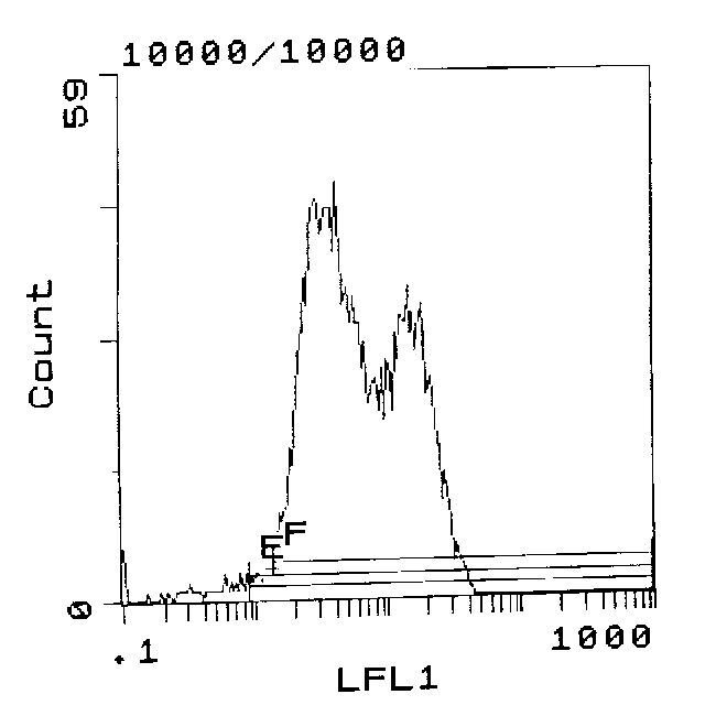 RT1.A Antibody (MA5-17410) in Flow Cytometry