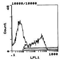RT1.Bu Antibody (MA5-17415) in Flow Cytometry